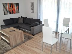 Debrecen, Bem tér - Exclusive 3bedroom+living room  flat in BEM PARK