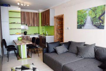 Debrecen, Thomas Mann utca - Nice flat on Thomas Mann street