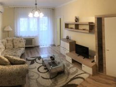 Debrecen, Simonyi út - Homy flat close to Uni